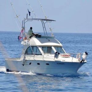 Madeira - Charter Fishing